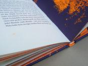 """Orange, neonfarben, kombiniert mit Nachtblau, beides Sonderfarben, dominieren bei Edgar Allan Poes """"Unheimliche Geschichten"""", illustriert von Kat Menschik (Galiani bei Kiepenheuer & Witsch)."""