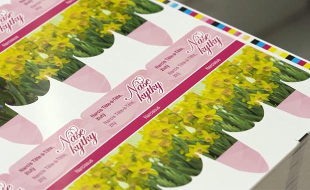 Recycling: Renner Print Media hat gemeinsam mit Partnern einen geschlossenen Upcycling-Prozess für bedruckte Kunststoff-Großformatbogen etabliert.